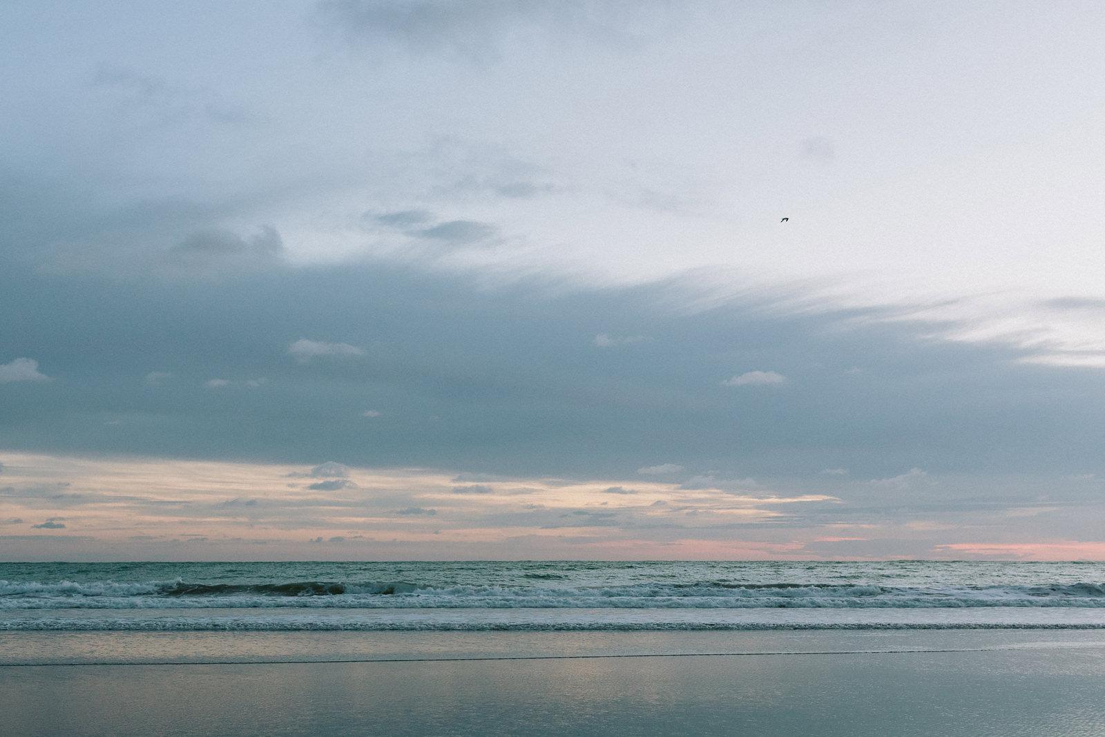pacific ocean thomas steibl